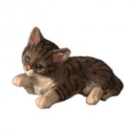 Британская кошка,22х14см