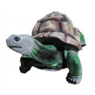 Большая черепаха,ГИПС